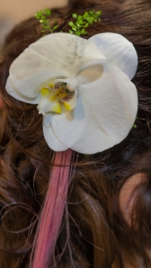 Orchid made especially for my hair by Wendy!